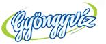 gyongyviz_logo